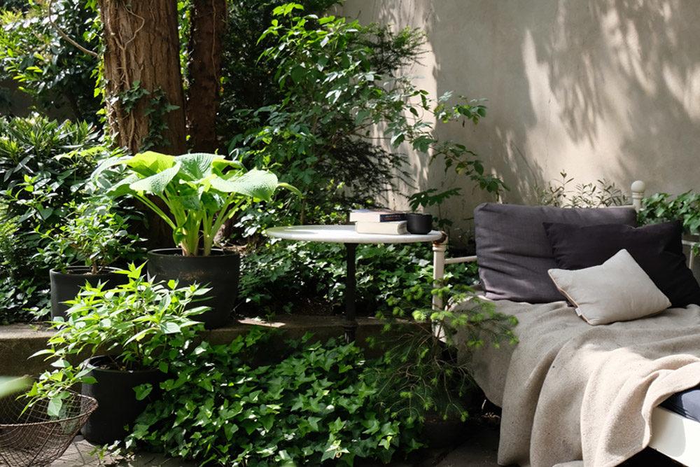 Pflanzen tauschen, Pflanzen retten, nachhaltige Blumenerde, Zimmerpflanzen fair einkaufen, Bio Pflanzen, nachhaltige Balkonpflanzen, Bio Garten, ökologisch Gärtnern, Pflanzen für Artenvielfalt, plastikrei Pflanzen kaufen