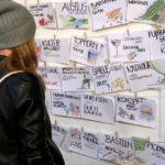 Fashion Facts, Fast Fashion, Slow Fashion, Ausstellung Fashion, Fashion Problem und Lösung, Fair Fashion Tipps Köln s organisieren, Pflanzentausch, Kleidertausch, Spieletausch, Tauschparty